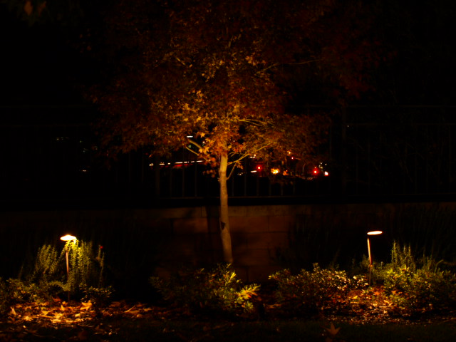 Lake Sherwood Lighting Landscape Lighting