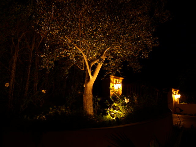 Lake Sherwood Lighting Landscape Lights